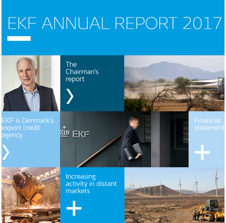 Image of EKF's annual report 2017