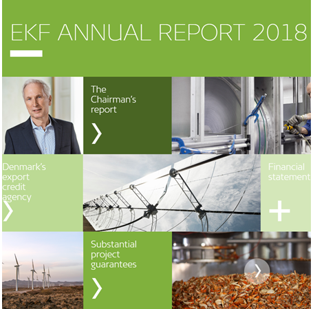 Image of EKF's annual report 2018
